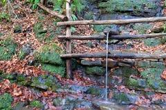 Die Quelle des Rohwassers Stockbilder