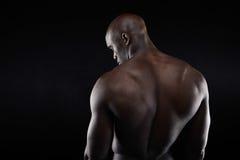 Die Rückseite des afrikanischen muskulösen Bodybuilders Lizenzfreies Stockfoto