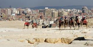 Die Rückseite von Giza Lizenzfreies Stockfoto
