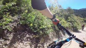 Die Radfahrer, die Reiten radfahren, fahren schnelle extreme raue Straße in der schönen Waldlandschaft von Freund-Schlucht 4k ers stock video