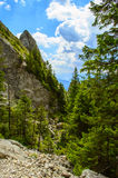 Die Rarau-Berge Lizenzfreies Stockfoto