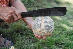 Die Raspel und die Kokosnuss Stockfotos