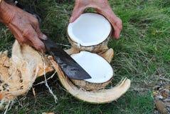 Die Raspel und die Kokosnuss Lizenzfreie Stockfotos