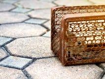 Die Ratte war in einem Käfig, der eine Ratte fängt, welche, die Ratte Ansteckung die Krankheit zu den Menschen wie Leptospirose h Stockfoto