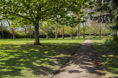 Die Rebgärten in Rochester, Großbritannien Stockfotografie