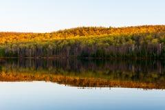 Die Reflexion der farbigen Bäume im See im Herbst stockfoto