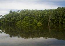 Die Reflexion des Baums auf dem See Lizenzfreies Stockfoto