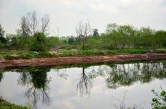 Die Reflexion und Effekte, die vom Wasser umweltsmäßig sind, verseuchten Esprit Stockfotografie