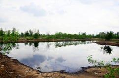 Die Reflexion und Effekte, die vom Wasser umweltsmäßig sind, verseuchten Esprit Lizenzfreie Stockbilder