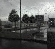 Die Regentropfen Lizenzfreies Stockbild