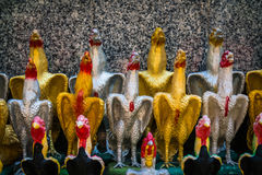 Die Reihe der Hühnerpuppe Stockfotos