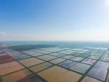 Die Reisfelder werden mit Wasser überschwemmt Überschwemmte Reispaddys Landwirtschaftliche Methoden des Anbauens des Reises auf d Lizenzfreie Stockbilder