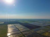 Die Reisfelder werden mit Wasser überschwemmt Landschaft vor der Sonne Überschwemmte Reispaddys Landwirtschaftliche Methoden von  Stockfotos