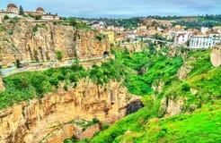 Die Rhummel-Fluss-Schlucht in Constantine algerien lizenzfreie stockfotografie