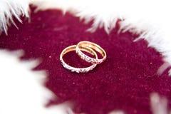 Die Ringe auf den Blumen, in einem Kasten, auf einem weißen Gewebe auf Spielwaren, Farben, Heiratsdetails, Eheringe Stockfotografie