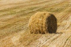 Die Rollen des Strohs am Sommer stockfoto