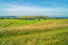 Die rollenden Sussex-Abstiege im Herbst lizenzfreies stockbild