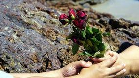 Die Rosen auf dem ruhigen tropischen Strand lizenzfreie stockfotos