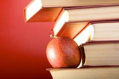 Die Rot-Bücher Lizenzfreies Stockbild