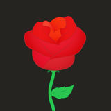 Die rote Rose stock abbildung