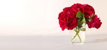 Die rote Rose ist ein weißer Hintergrund Stockbild