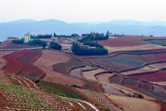 Die rote Terrasse von Yunnan, China Stockfoto