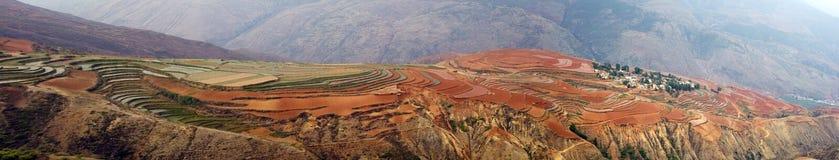 Die rote Terrasse von Yunnan, China Stockfotografie