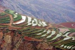 Die rote Terrasse von Yunnan, China Stockbilder