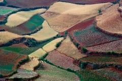 Die rote Terrasse von Yunnan, China Stockbild