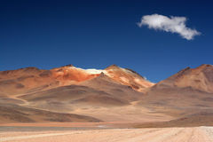 Die rote Wüste Stockfotografie