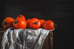 Die roten Tomaten Stockfotografie
