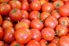 Die roten Tomaten im Korb. Lizenzfreies Stockfoto