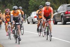 Die 2014 RSVP Seattle zu Vancouver-Radtour Lizenzfreies Stockfoto
