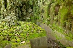 Die Ruinen des alten Wasser-Pools Lizenzfreie Stockbilder