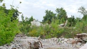 Die Ruinen des Gebäudes gemacht vom Beton und vom Ziegelstein in den Dickichten stock footage