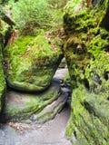 Die sächsische Schweiz Stockfotos