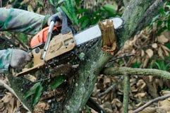 Die Säge, die das Holz schneidet Lizenzfreie Stockfotos