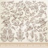 Die Sammlung der Vektorhand gezeichnet blüht in gravierter Art Ich Lizenzfreies Stockbild