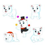 Die Sammlung des weißen Zirkusbären, der mit dem Ball mit der unterschiedlichen Aufstellung spielt lizenzfreie stockfotos