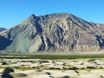 Die Sanddüne von Nubra, Ladakh, Nord-Indien Lizenzfreie Stockfotografie