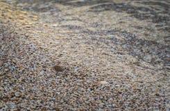 Die sandigen Ufer des Meeres, punktiert mit Muscheln stockfoto