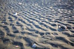Die Sandkräuselungen stockfotografie