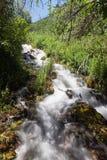 Die schöne Ansicht des Wassers fallend an der Kaskade entspringt Nationalpark Lizenzfreies Stockbild