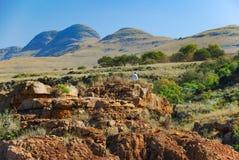 Die schöne Blyde-Schlucht, Südafrika stockfotografie