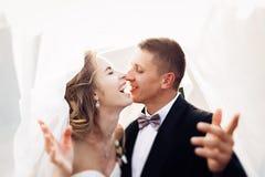 Die schöne Braut und der Bräutigam Lizenzfreie Stockfotos