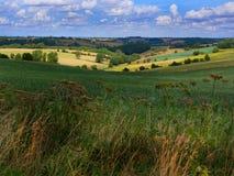 Die schöne englische Landschaft, wie im Cotswolds gesehen Stockbilder