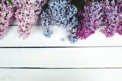 Die schöne Flieder auf einer Holzoberfläche Lizenzfreies Stockfoto