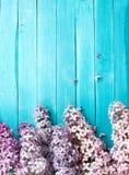 Die schöne Flieder auf einer Holzoberfläche Lizenzfreies Stockbild