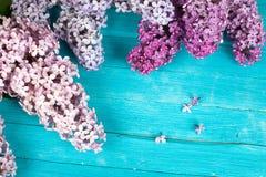 Die schöne Flieder auf einer Holzoberfläche Stockbilder