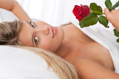Die schöne Frau, die im Bett anhält Rot liegt, stieg Stockfotografie